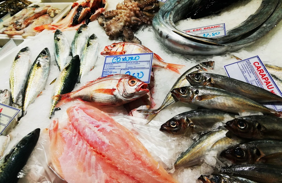 The Mercado da Ribeira - fresh fish