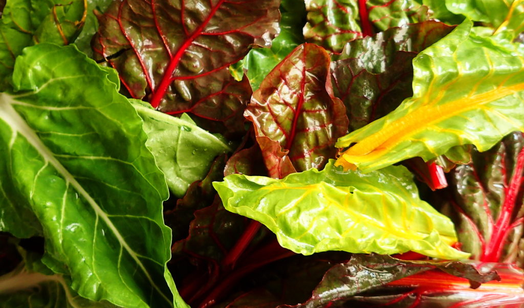 Colorful Swiss chard leaves for a tourte aux blettes